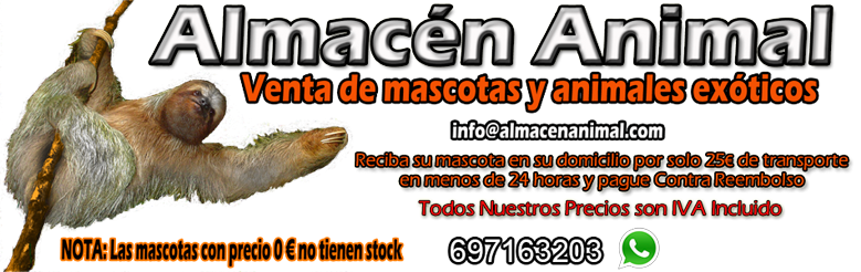 Almacén Animal